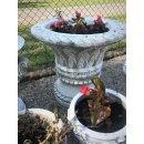 Runde Pflanzschale Blumenkübel Pflanzkübel Amphoren Schale Blumentopf Steinmöbel