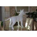 Bullterrier XXL Bull Terrier Pit-Bull Dogge Rassehund Bully Lack Tierfiguren