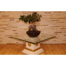 Runder Glas Beistelltisch Blumensäule Steinmöbel Versa Serie Blumenständer Säule